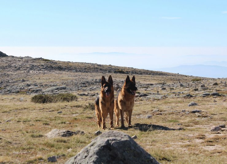Yka e Mara Vall du Paço
